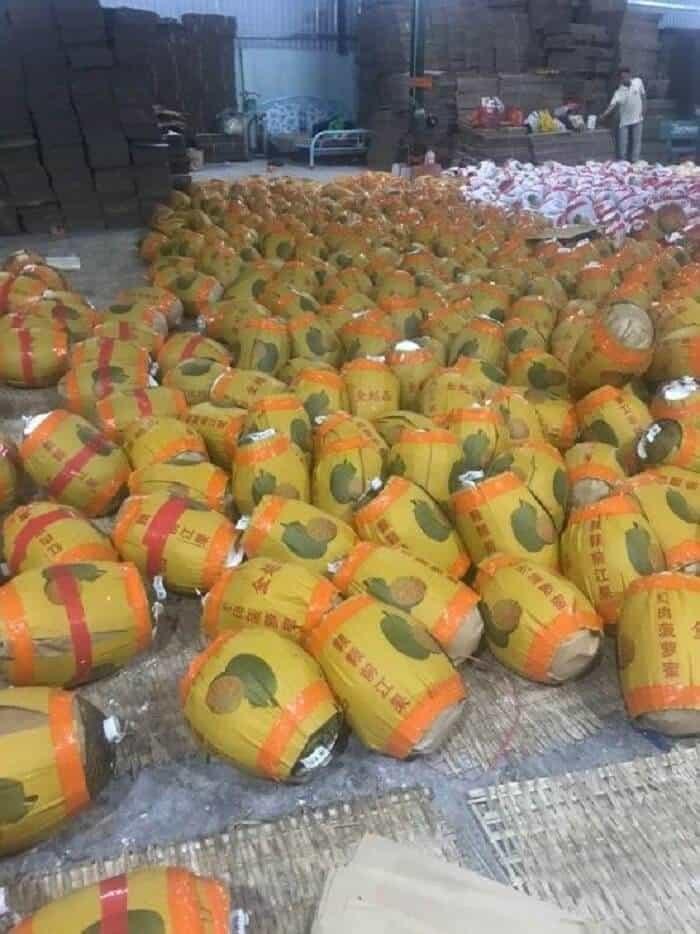 Hình thức xuất khẩu trái cây sang Trung Quốc bằng đường sắt
