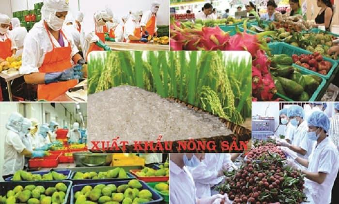 Thủ tục xuất khẩu nông sản sang Trung Quốc bằng đường sắt
