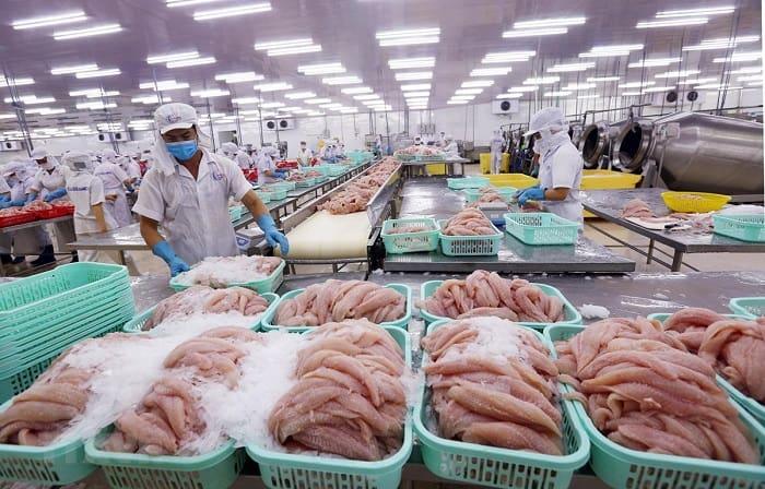 Tìm hiểu quy định, tiêu chuẩn xuất khẩu cá tra sang Trung Quốc