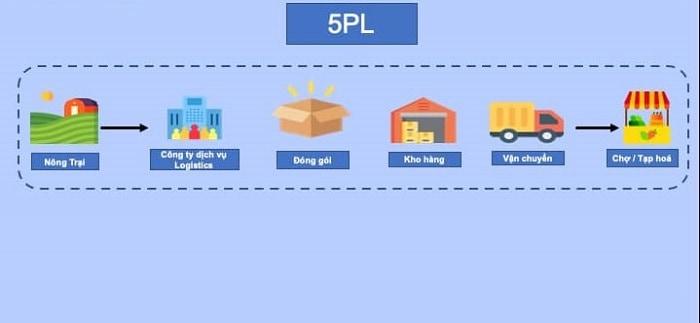 5PL là gì? Tìm hiểu chi tiết những quy định trong chiến lược 5PL